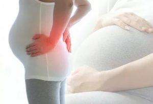 Болит живот 24 недели беременности