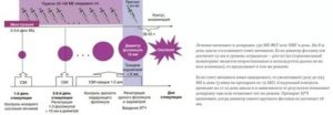 Стимуляция овуляции, эндометрий