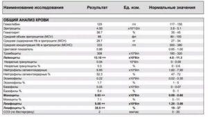 Повышены базофилы, гемоглобин, эритроциты