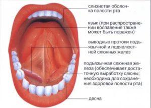 Под языком покраснение