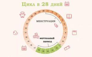 Можно ли забеременеть на 6 день после менструации