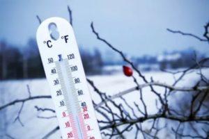 Высокая температура по ночам через день