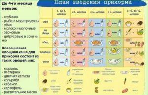 Прикорм и присаживание