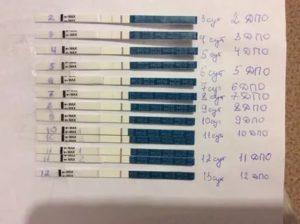 Может ли дюфастон влиять на хгч в тесте на беременность?