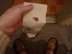 После стула на туалетной бумаге заметила капли крови