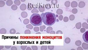 Понижены моноциты