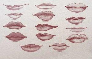 Внутренние губы разной формы