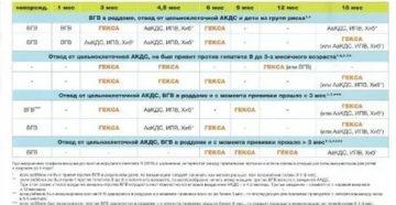 График прививок, гепатит и инфанрикс гекса