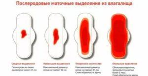 Задержка вторых месячных после родов