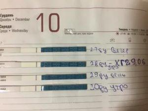 Задержка месячных 19 дней