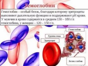 Гемоглобин 80